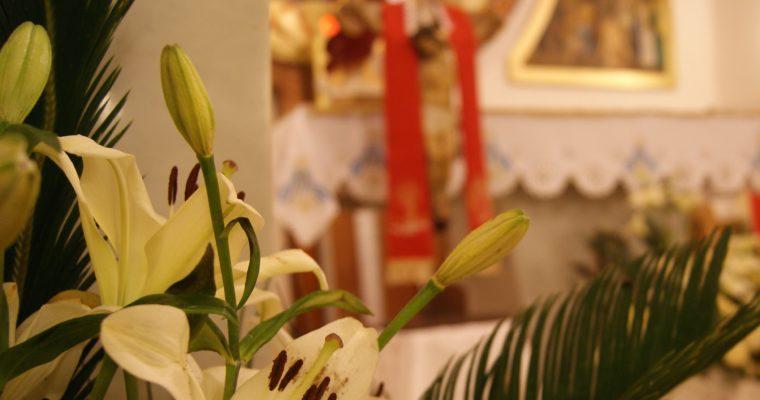 XI Niedziela Zwykła